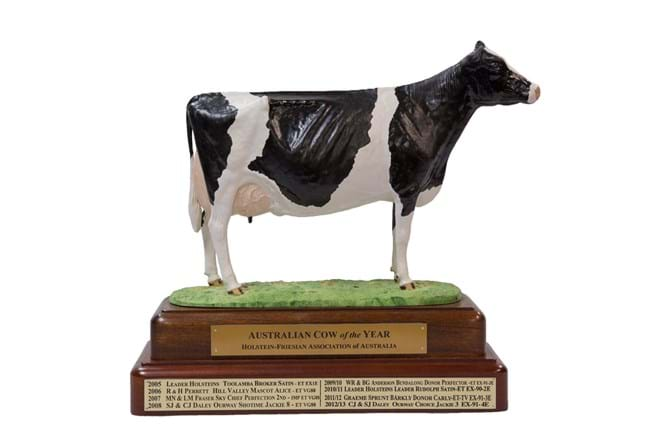 Holstein Australia's coveted Cow of the Year trophy